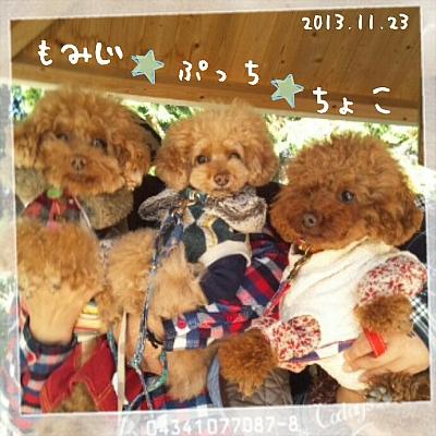 2013-11-23_20_30_52.jpg