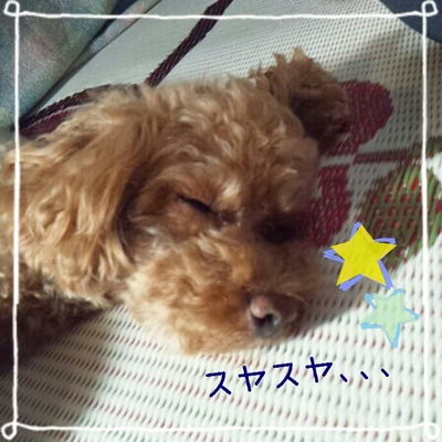 2013-07-15_19.00.39.jpg