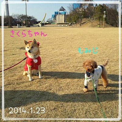 2014-01-23_20.24.46.jpg