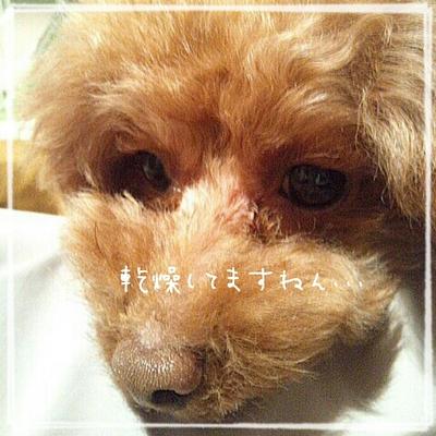 2014-02-13_20.10.10.jpg
